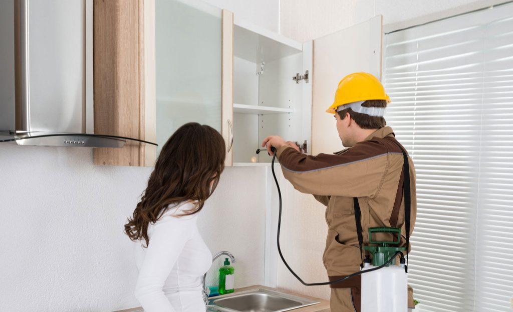 pest control service benefits